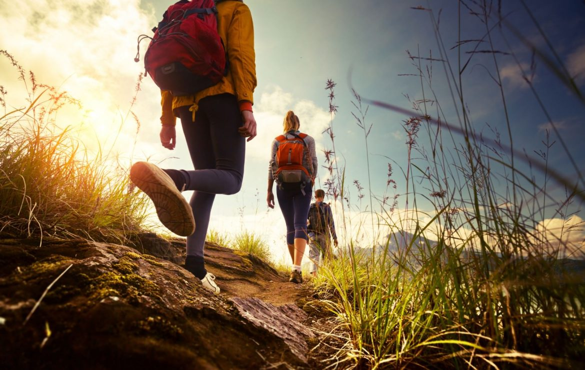 Hiking Safety Tips On ABC 15 News
